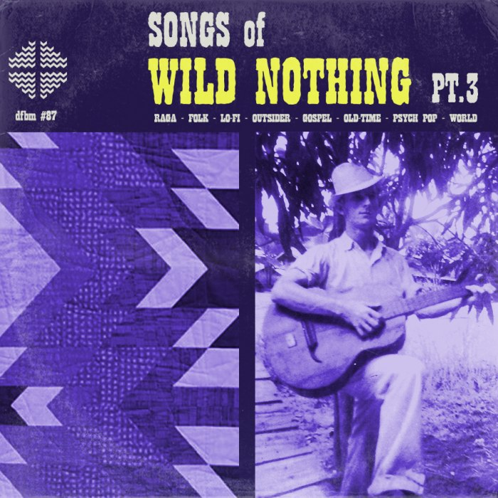 dfbm #87 - Songs of Wild Nothing Pt. III