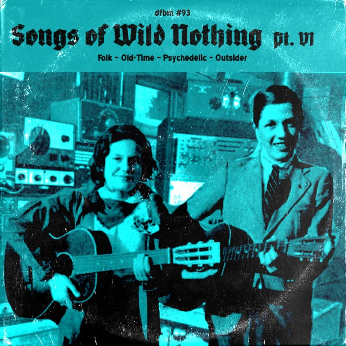 dfbm #93 - Songs of Wild Nothing Pt. VI