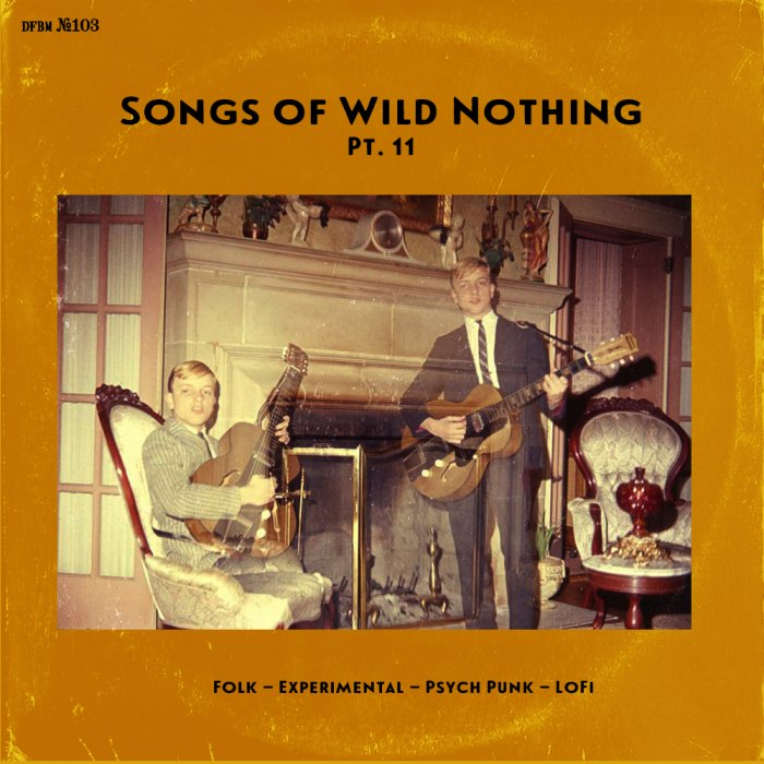 dfbm #103 - Songs of Wild Nothing Pt. 11