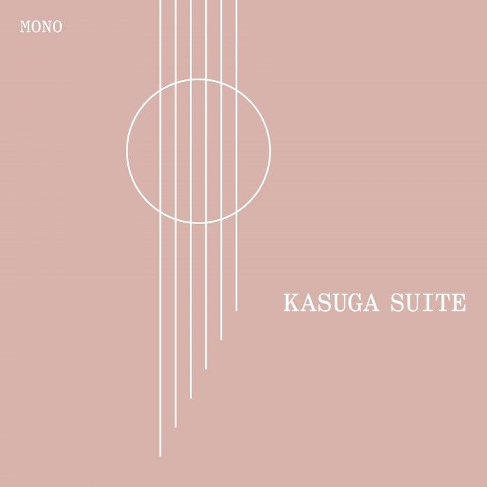 Regular Expression - Kasuga Suite