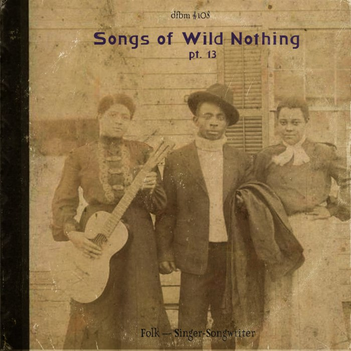 dfbm #108 - Songs of Wild Nothing Pt. 13