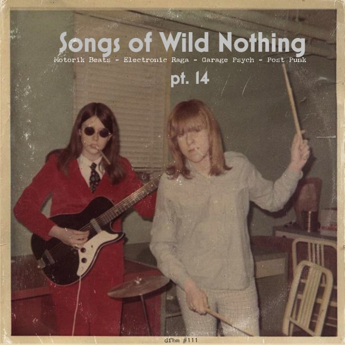 dfbm #111 - Songs of Wild Nothing Pt. 14