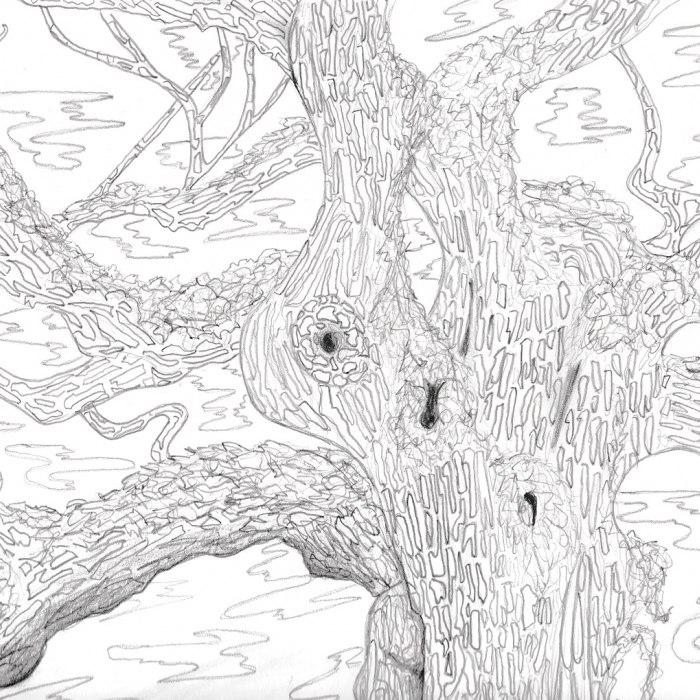 James Tweeddale - Weird World Rolls On