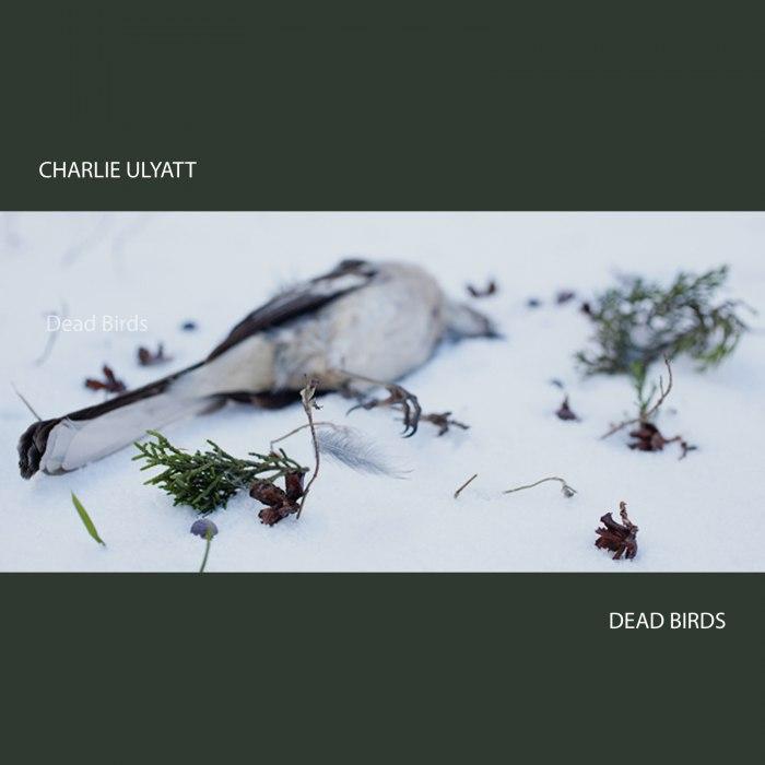 Charlie Ulyatt - Dead Birds